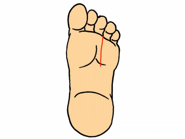 足裏の画像